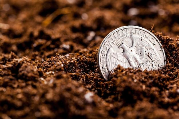 Выращивание монет евро, малая глубина резкости, Premium Фотографии