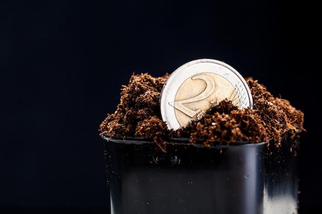 Выращивание монет евро. Premium Фотографии