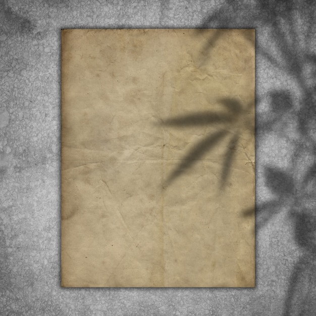 Grunge paper on a concrete texture with a plant shadow overlay Free Photo