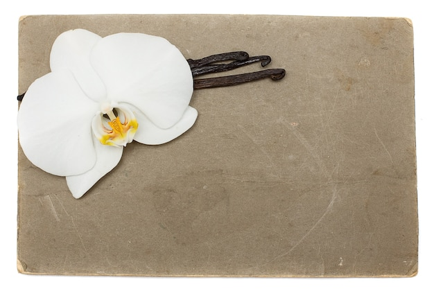 Grunge paper with white orchid and vanilla beans Premium Photo