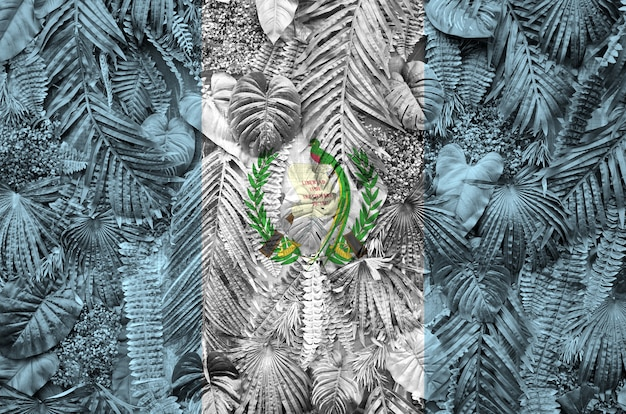Guatemala flag depicted on many leafs of monstera palm trees. trendy fabric Premium Photo