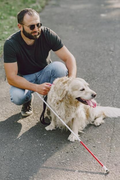 Cane guida che aiuta un cieco in città. bel ragazzo cieco riposare con il golden retriever in città. Foto Gratuite