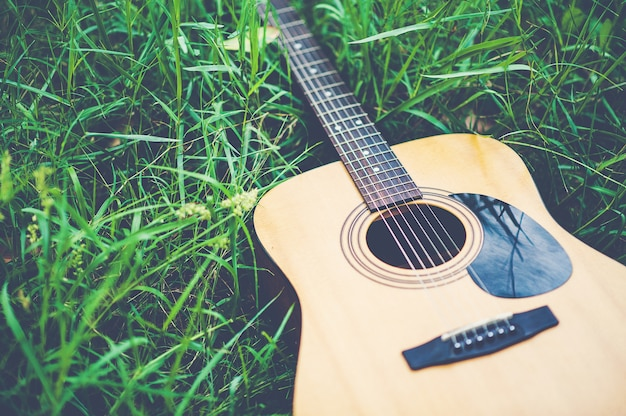 Guitar in the forest take a guitar to the forest. Premium Photo