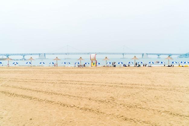 Gwangan beach one of the popular beaches in busan, south korea. Premium Photo