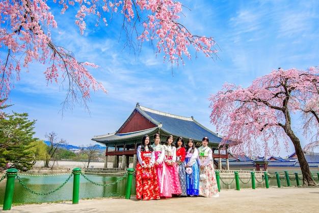 봄에는 벚꽃이 피어있는 경복궁과 한복을 입은 관광객 무료 사진