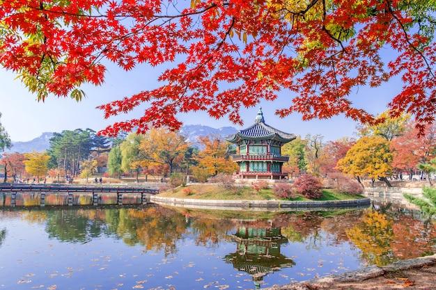 한국의 가을 경북궁과 단풍 나무. 무료 사진