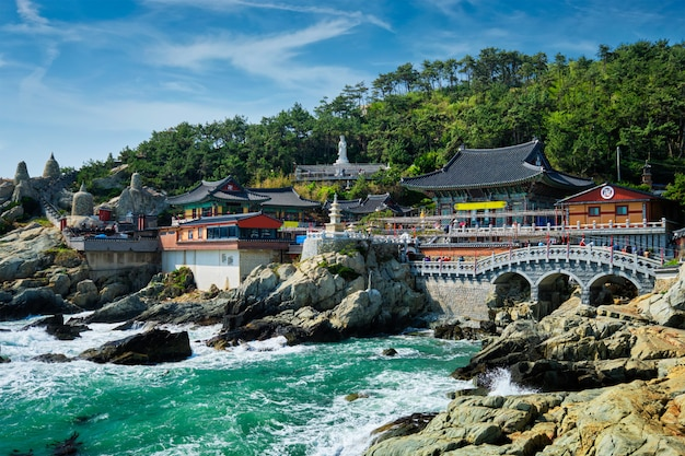 Haedong yonggungsa temple. busan, south korea Premium Photo