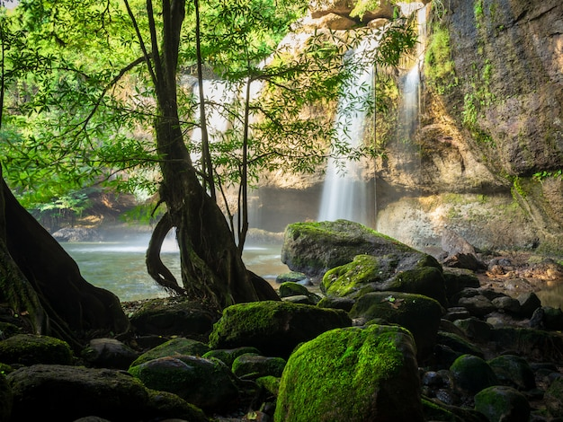 Haew suwat滝カオヤイ国立公園、ナコンラチャシマー、タイ Premium写真