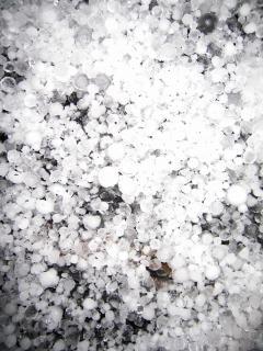 Hail stones Free Photo