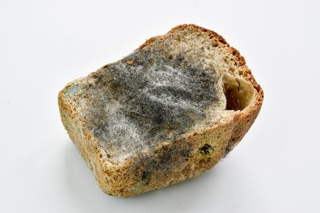 カビで覆われた黒いパンの半分のパン Premium写真