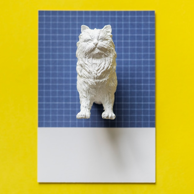 Half a cat on a colorful paper Free Photo