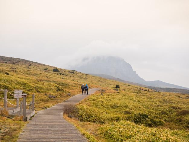 Hallasan mountain national park at jeju island Premium Photo