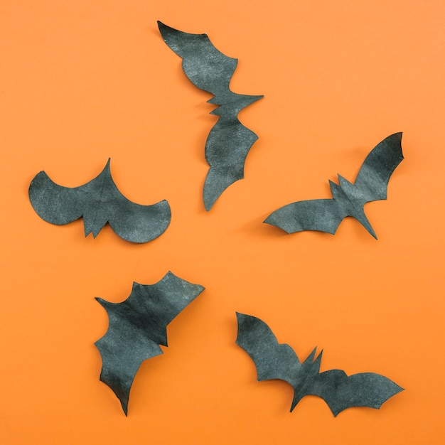 Halloween application with flying bats Free Photo