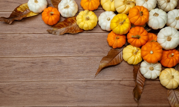 Halloween background with pumpkins. Premium Photo