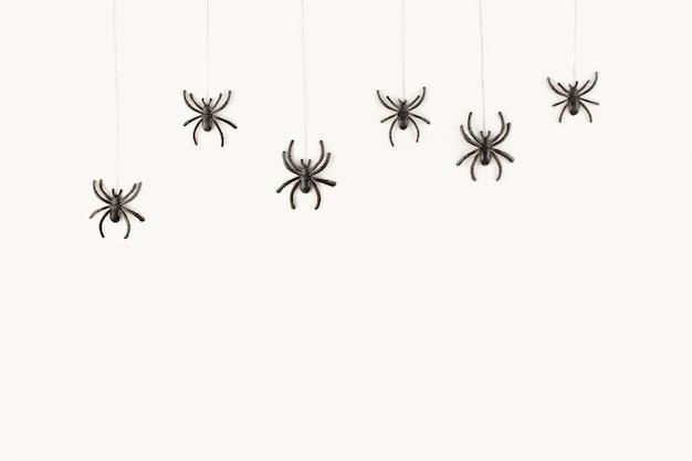 Хэллоуин фон с пауками на белом фоне. Premium Фотографии