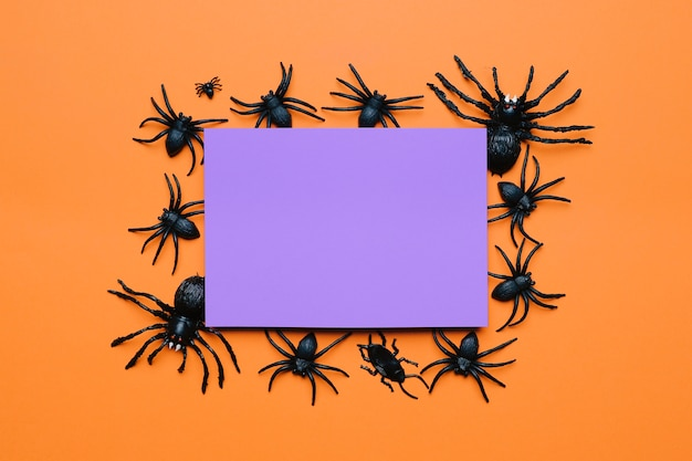 クモのハロウィーンの組成 無料写真