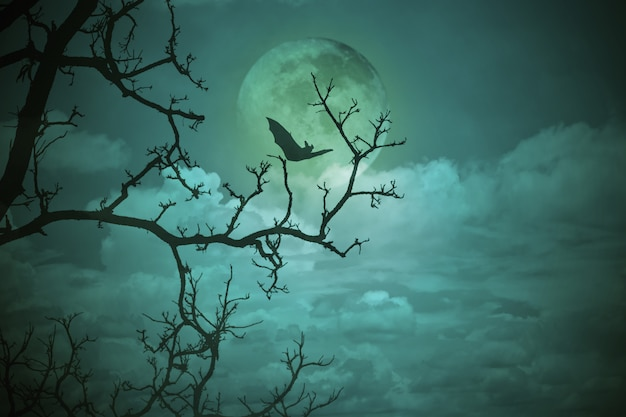 Halloween concept: spooky forest with full moon and dead trees, dark horror landscape. Premium Photo