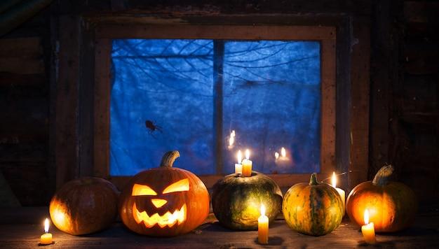 Украшение на хэллоуин, тыквы стоят в ряд Premium Фотографии