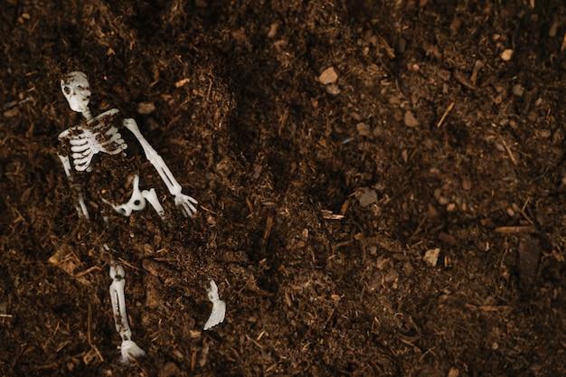 Halloween decoration with buried skeleton Free Photo