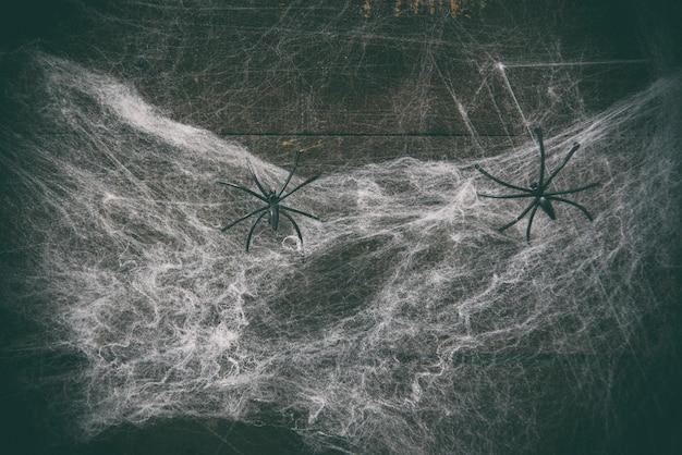 Halloween horror decoration spider web and black spider on wooden dark Premium Photo