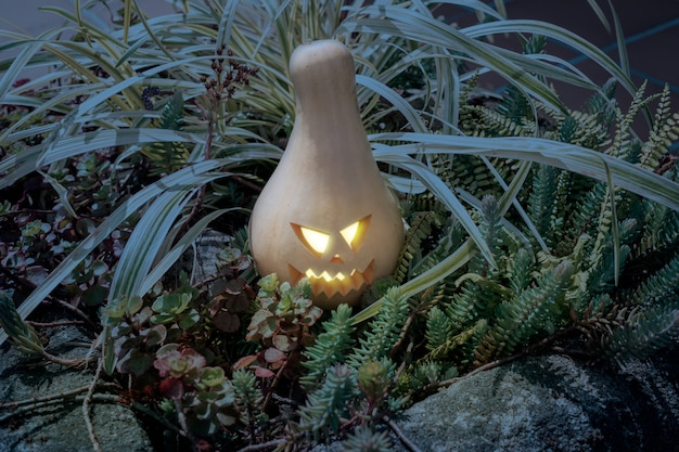 Halloween pumpkin on garden at dusk Premium Photo