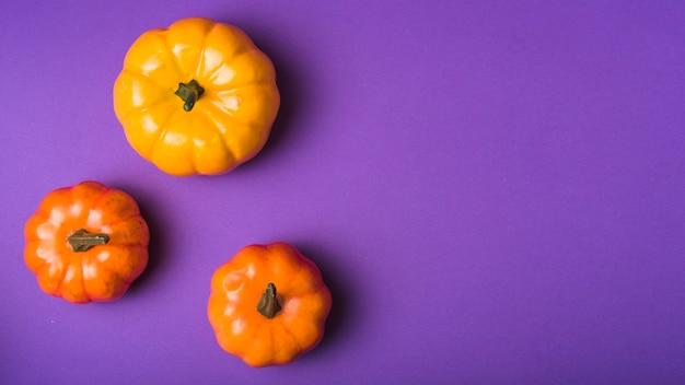Halloween sleek pumpkins Free Photo