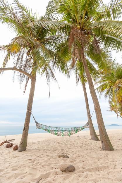 Hammock on a palm tree sunset glare of the sun sea ocean sky shore sand Premium Photo