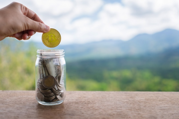 coin drop cryptocurrency