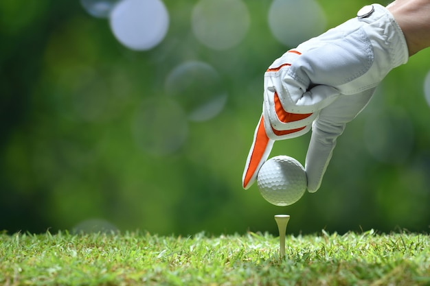 Hand hold golf ball with tee on golf course Premium Photo