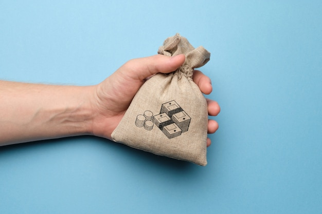 Hand holding a bag with a picture of money. Premium Photo