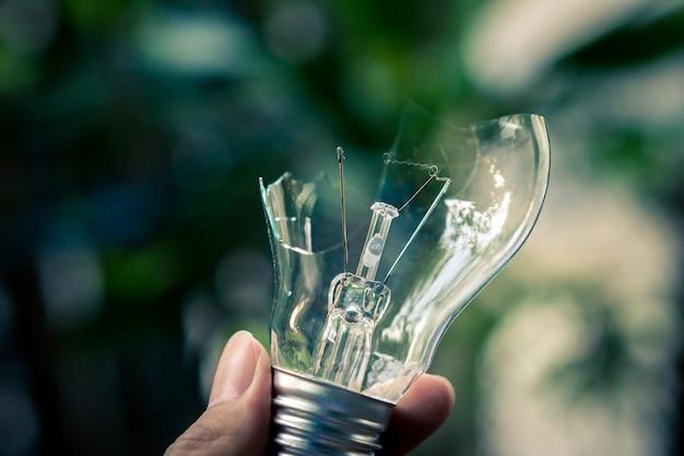Hand holding broken lightbulb on nature background Premium Photo