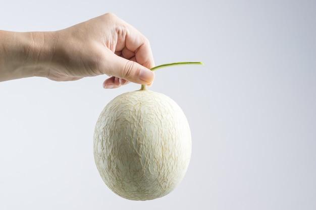 Hand Holding Cantaloupe Melon Premium Photo Cantaloupe and mozzarella with prosciutto and basil. freepik