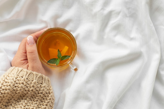 Hand holding cup of tea with mint Free Photo