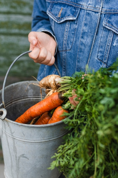 Hand holding a grey bucket with carrots Free Photo