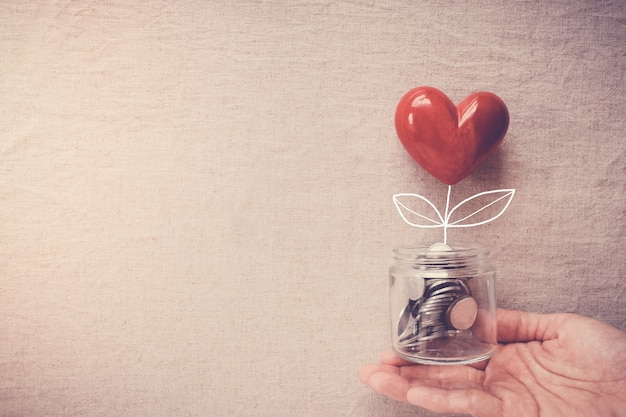 Hand holding a jar of heart tree growing on money coins Premium Photo