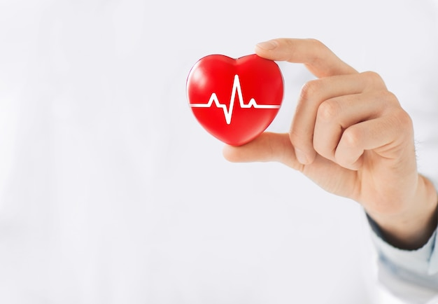 A hand holding a red heart with ecg line. Premium Photo