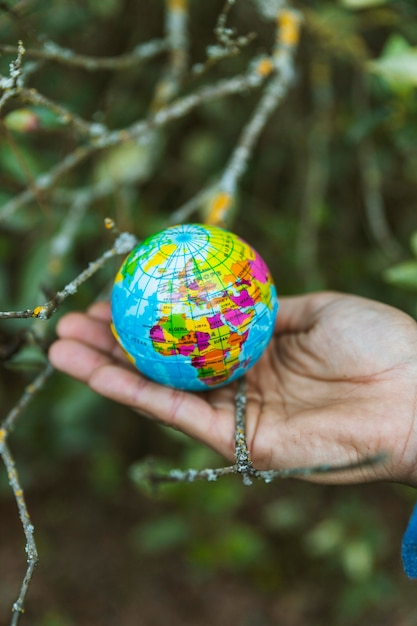 Hand holding small globe in nature Free Photo