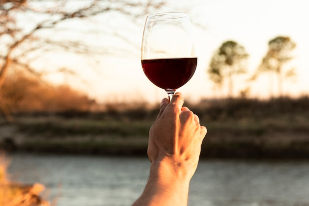 Hand holding up glass of red wine Free Photo
