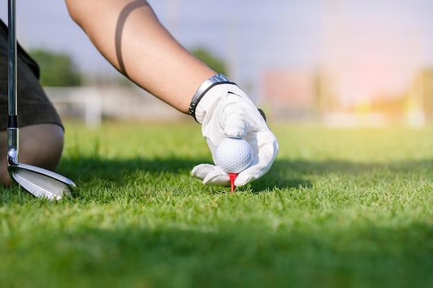 코스에서 티에 골프 공을 배치하는 장갑에 손을 프리미엄 사진