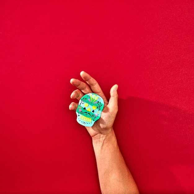 The hand of a man holds a handcraf paper skull calaveras attributes of the mexican holiday calaca on a red background with space for text and reflection of shadows. halloween. flat lay Premium Photo