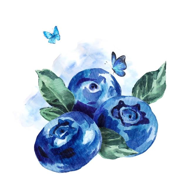 手描き夏水彩ブルーベリー Premium写真