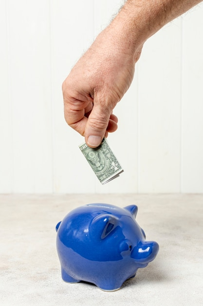 Hand putting a  bank-note in a piggy bank Free Photo
