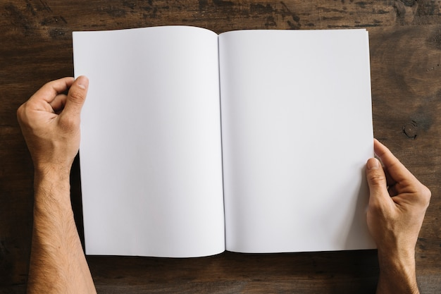 hand with open blank brochure photo free download