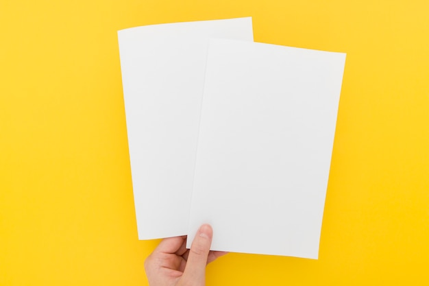 Hand with two brochures Free Photo