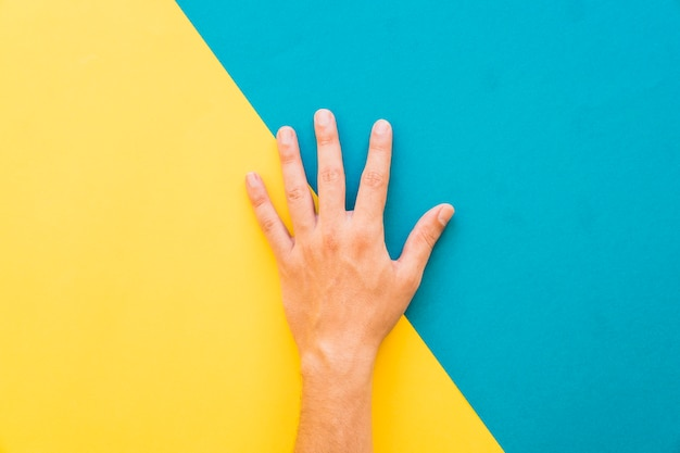 Hand on yellow and blue background Free Photo