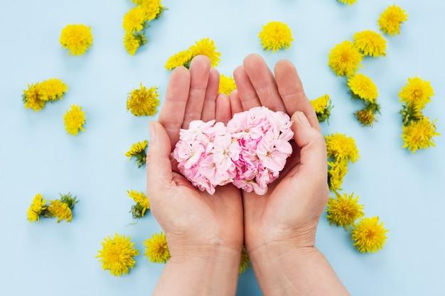 Руки держат яркие цветы на пастельно-синем пространстве Premium Фотографии