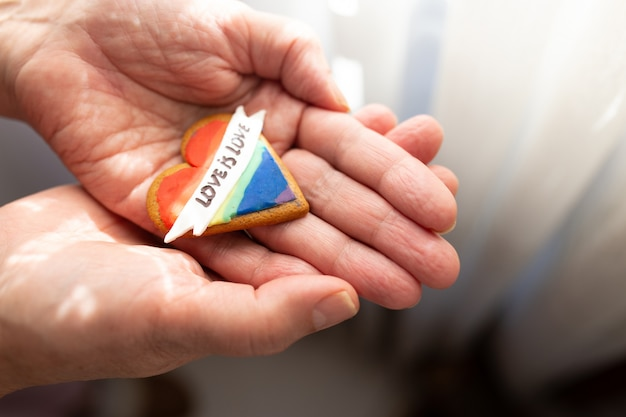 pride rainbow Rainbow heart felt gingerbread decoration