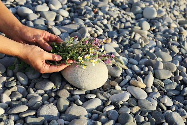 Руки держат небольшой букет полевых цветов и кладут его на поверхность гальки. Premium Фотографии