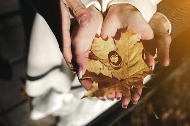 Руки держат сухой лист с двумя обручальными кольцами Бесплатные Фотографии