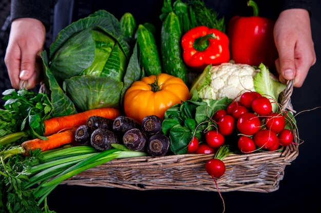 Hands holding big basket with different fresh farm vegetables Premium Photo